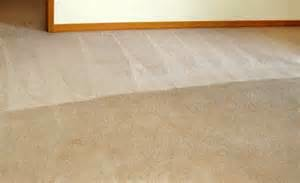 Photo #5: Carpet Cleaning Special $99 for FIVE ROOMS! Encore Carpet Care