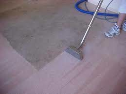 Photo #3: Carpet Cleaning Special $99 for FIVE ROOMS! Encore Carpet Care