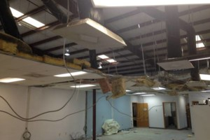 Photo #22: ACOUSTICAL CEILING INSTALLATION. RESIDENTIAL/COMMERCIAL