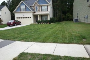 Photo #6: Grass Cut/Mowing, Power Washing, Aeration....