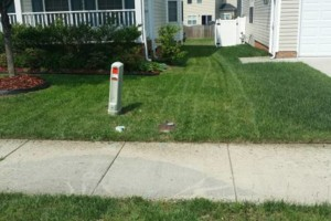 Photo #4: Grass Cut/Mowing, Power Washing, Aeration....