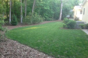 Photo #7: LAWN SERVICES - BLOWING, MULCH, LEAF BLOWING