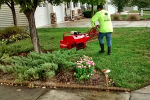 Photo #1: Lawn Care, Gardening & Landscaping by Orlando Flores