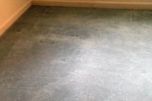 Photo #9: Mike's Carpet Repair. Carpet Stretching/Creaking Floor Repair