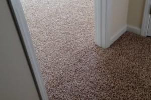 Photo #7: Mike's Carpet Repair. Carpet Stretching/Creaking Floor Repair