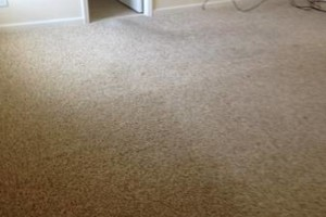 Photo #5: Mike's Carpet Repair. Carpet Stretching/Creaking Floor Repair