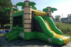 Photo #3: Renting Bounce house. $120 for all day!