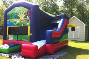 Photo #6: Renting Bounce house. $120 for all day!