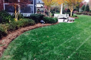Photo #6: Limitless Lawns and Services