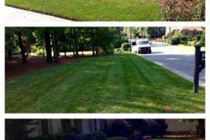 Photo #4: Romero Landscaping Services. Commercial & Residential