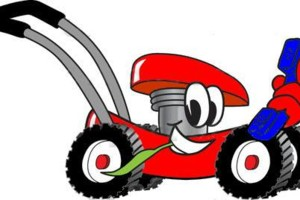 Photo #8: Small Engine - Lawn Mower Repair Service