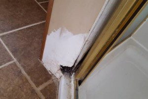 Photo #8: QUALITY HANDYMAN SERVICES...AT GREAT PRICE!
