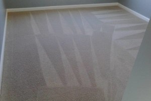 Photo #1: Picazo Carpet Cleaners. Make Carpet Look Brand New!