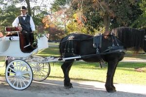 Photo #2: Rev. Samantha L. Hear - Raleigh Wedding Officiant