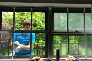 Photo #8: 15% OFF RESIDENTIAL WINDOW CLEANING! LIMITED TIME!