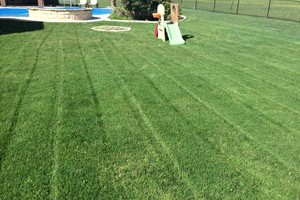 Photo #4: Mora's Lawn services