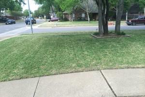 Photo #2: Mora's Lawn services
