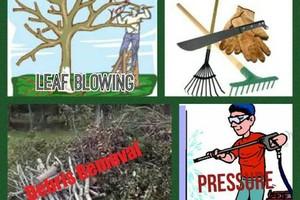 Photo #1: Debris Removal/Tree Triming