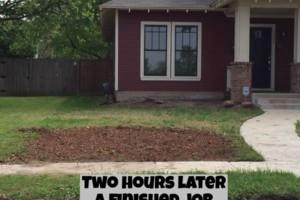 Photo #11: 811 Stump Grinding / Tree Service / Mistletoe removal