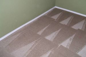 Photo #5: JAGSPOTLESS/CARPET CLEANING/DRY EXSTRACTION