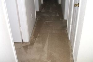 Photo #4: JAGSPOTLESS/CARPET CLEANING/DRY EXSTRACTION