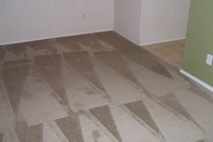 Photo #3: JAGSPOTLESS/CARPET CLEANING/DRY EXSTRACTION