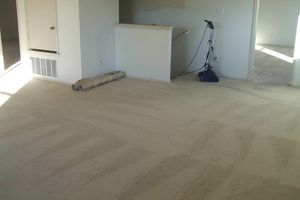 Photo #1: JAGSPOTLESS/CARPET CLEANING/DRY EXSTRACTION
