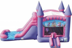 Photo #5: BOUNCE HOUSE AVAILABLE FOR THIS WEEKEND!