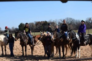 Photo #1: Little K Acres - Horses For Birthday Parties