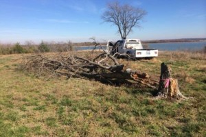 Photo #1: Farm & Ranch Tree & Brush removal. Haul off!