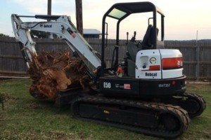 Photo #7: Farm & Ranch Tree & Brush removal. Haul off!