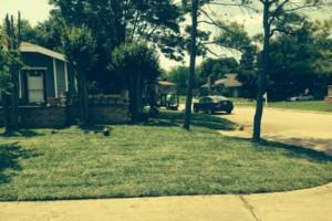 Photo #12: Bono complete lawn service