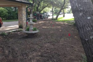 Photo #9: Bono complete lawn service