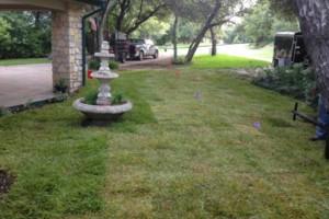 Photo #8: Bono complete lawn service