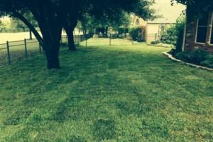 Photo #6: Bono complete lawn service
