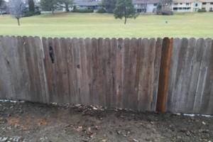 Photo #8: The Fence Doctor - Vinyl, Cedar, Chain Link Fence, Custom Walk Gates