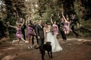 Photo #1: Todd Allman. Special 40% off Wedding photography