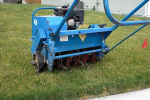 Photo #3: Reliable Aeration / Aerating Services
