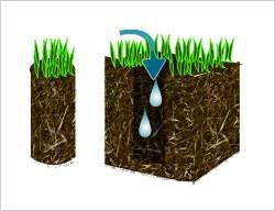 Photo #1: Reliable Aeration / Aerating Services