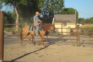 Photo #3: Do you love horses? Want to learn to ride?