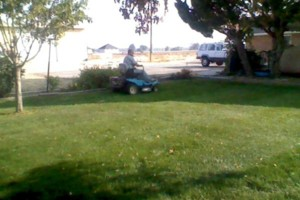 Photo #2: Perez Lawn Care LLC. Affordable Lawn Care.