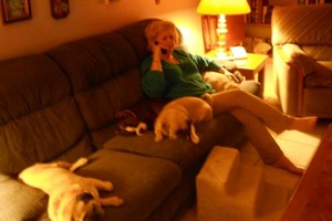 Photo #5: HOME SWEET HOME PET SITTING (Licensed)
