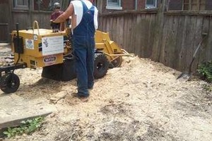 Photo #6: Rhew's Outdoor Services
