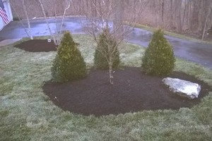 Photo #3: Eugene's landscaping