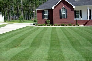 Photo #1: Reasonable grass cutting/yard cleanup