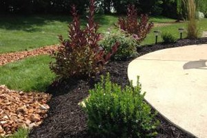 Photo #2: Professional and Locally Landscape. Spring Specials!