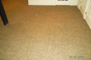 Photo #8: CARPET and FLOORING INSTALLER