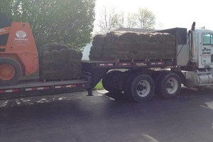Photo #4: CB Home Improvement. Spring Clean Up! Brush Clearing, Mulch, Staining, Sod Install