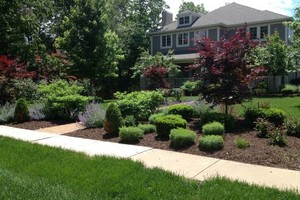 Photo #1: CB Home Improvement. Spring Clean Up! Brush Clearing, Mulch, Staining, Sod Install