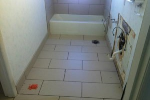 Photo #5: Remodeling / Repair Services. FREE ESTIMATES!